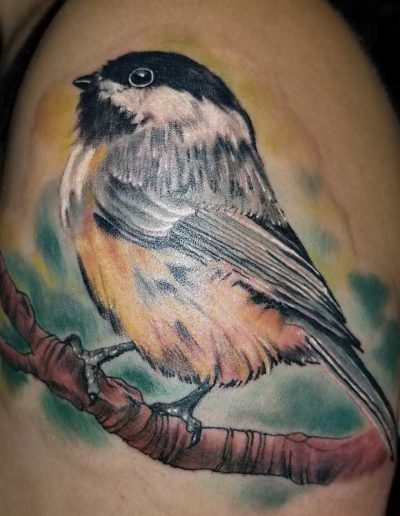 RyanFlemingWatercolorChickadee