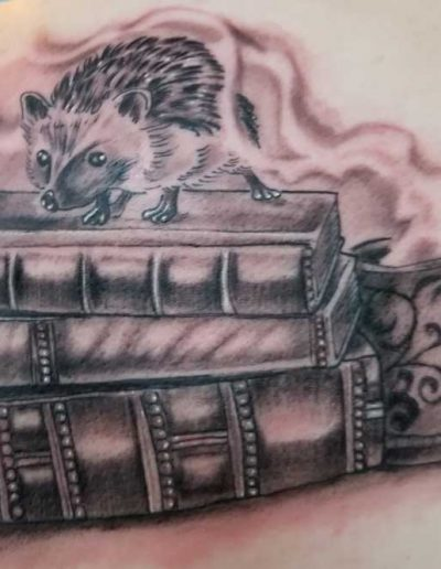 RyanFlemingBooksHedgehog